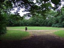 Дерево парка Стоковое Изображение