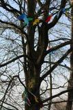Дерево партии стоковые изображения