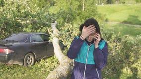 Дерево после того как ураган упал на автомобиль, девушка вызывает спасителей Стоковые Изображения RF