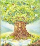 Дерево премудрости, картины маслом, костюма для плаката, печати, обои, Стоковое Фото