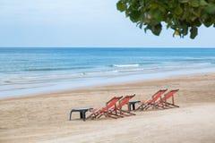 Дерево пляжа моря побережья Стоковые Фотографии RF