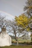 Дерево & радуга золы в Шотландии Стоковая Фотография