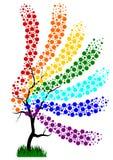 Дерево радуги Стоковое Изображение RF