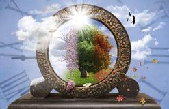 Дерево 4 сезонов в часах Стоковое фото RF