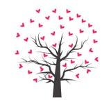 Дерево сердца с лист сердца Стоковые Изображения RF