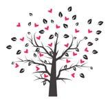 Дерево сердца с лист сердца Стоковое Изображение