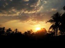 Дерево силуэта на красивой предпосылке неба и восхода солнца стоковая фотография