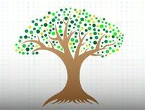 Дерево со значком логотипа листьев и корней круга стоковое изображение rf
