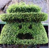 Дерево стороны форменное Стоковая Фотография RF