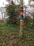 Дерево с пальто Рук-Knit Стоковые Изображения