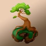 Дерево с сильными корнями Стоковые Фотографии RF
