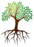 Дерево укореняет логотип иллюстрация вектора