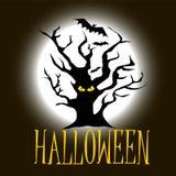 Дерево хеллоуина с глазами на темной предпосылке с летучими мышами стоковые фотографии rf