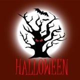 Дерево хеллоуина с красным цветом наблюдает на темноте - красной предпосылке с летучими мышами стоковое изображение rf