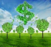 Дерево экономики капиталовложений предприятий сформированное как знак доллара стоковая фотография rf