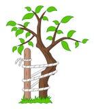 Дерево Andry Стоковая Фотография RF
