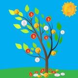 Дерево Bitcoin Секретный солнце Glade минирования свет идеи дела шарика кредиток сверх Сбор электронных денег вектор Стоковые Фото