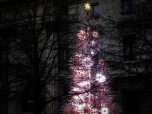 Дерево Bulgari Стоковая Фотография