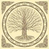 Дерево Druidic Yggdrasil, круг, коричневый логотип Готический старый стиль книги Стоковые Изображения