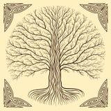Дерево Druidic Yggdrasil, круг, коричневый логотип Готический старый стиль книги Стоковая Фотография