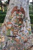 Дерево Fairyland Стоковое фото RF