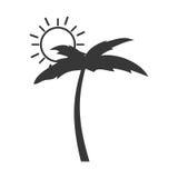 Дерево Palm Beach с солнцем Стоковые Фотографии RF