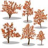 Деревья вектора равновеликие и декоративные кусты иллюстрация вектора