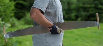 Деревья вырезывания для швырка, вырезывания ручной пилы Стоковое фото RF