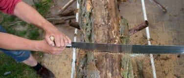 Деревья вырезывания для швырка, вырезывания ручной пилы Стоковое Фото