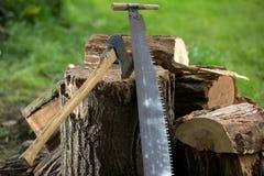 Деревья вырезывания для швырка, вырезывания ручной пилы Стоковые Изображения