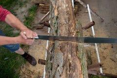 Деревья вырезывания для швырка, вырезывания ручной пилы Стоковая Фотография RF