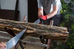 Деревья вырезывания для швырка, вырезывания ручной пилы Стоковые Изображения RF