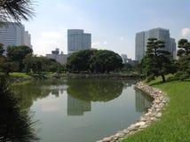 Деревья в зеленом парке в токио Стоковое Изображение