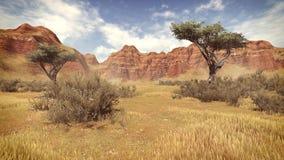 Деревья в дневном времени 4 каньона иллюстрация штока