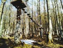 Деревья, горы, земля и природа шаг от рая Стоковые Фото