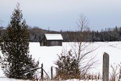 Деревья зимы в сельской местности Канады Стоковые Изображения RF