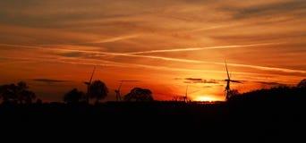 Деревья и ветротурбины silhouetted пламенистым заходом солнца Стоковое Изображение RF