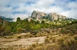 Деревья и горы в пасмурном дне Стоковая Фотография