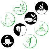 Деревья и заводы логотипа Стоковые Фото