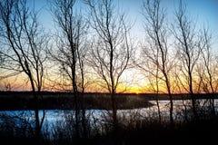 Деревья и замороженное река на заходе солнца Стоковые Фото