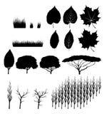 Деревья и листья стоковые фотографии rf