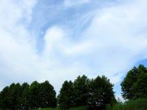 Деревья и красивое облачное небо, Литва Стоковое Фото