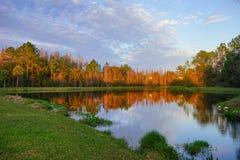 Деревья и малый пруд формируют совершенное отражение на заходе солнца Стоковые Фотографии RF