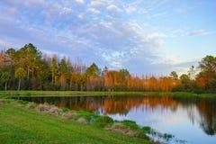Деревья и малый пруд формируют совершенное отражение на заходе солнца Стоковые Фото