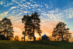 Деревья и небо с облаками Стоковое Изображение RF