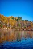 Деревья и отражение Стоковая Фотография RF