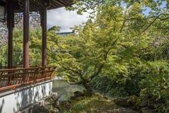 Деревья и палуба в Д-р Сад Сунь Ятсен классический китайский стоковые изображения