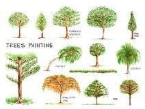 Деревья крася изолят на белой предпосылке Стоковые Изображения
