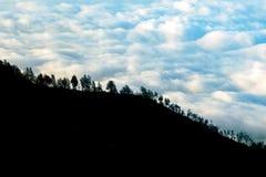 Деревья на горных склонах на фоне облаков шторма светлая тень Стоковое фото RF