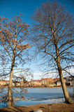 Деревья на зоне замка Frederiksborg на Hillerod Стоковые Фото